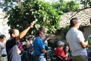 Worship in San José